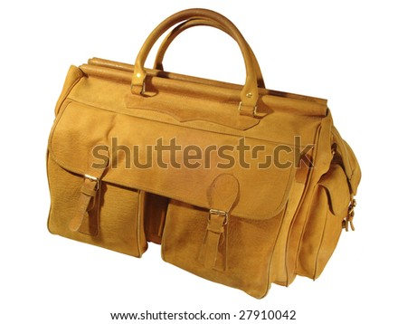 luggage bag of elephant skin isolated - stock photo