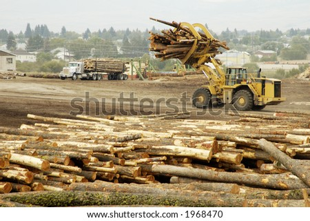 Lumber being processed at a forest products sawmill. - stock photo