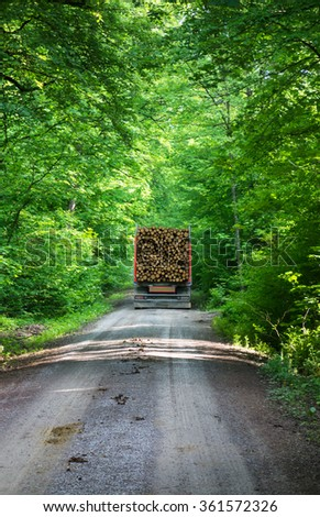 Lumber transporter in the forest - stock photo