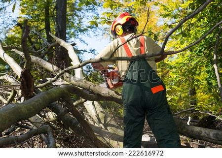 lumberjack fighting against underwood in forest - stock photo