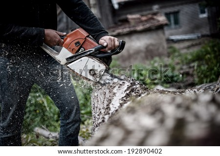Lumberjack worker in full protective gear cutting firewood and timber in forest with a professional chainsaw  - stock photo