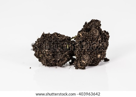 Lump of soil on white background close up.