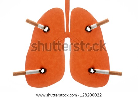 Lungs of the person spoiled by cigarettes is isolated on a white background - stock photo