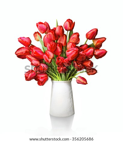 Lush bunch of cheerful elegant vivid red tulips in flowerpot isolated on white backdrop with clipping path. View close-up with copy space for text - stock photo