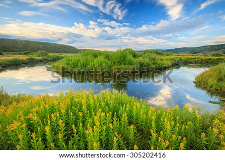 Lush summer landscape at the Strawberry River, Utah, USA. - stock photo