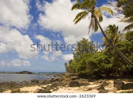 lush tropical beach in hawaii - stock photo