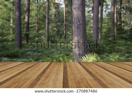 Lush vibrant forest landscape in Summer with wooden planks floor - stock photo