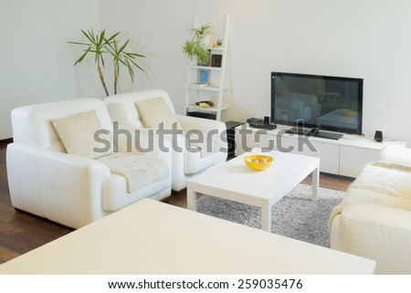 Luxurious living room with with television set - stock photo
