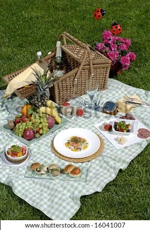 luxurious picnic - stock photo