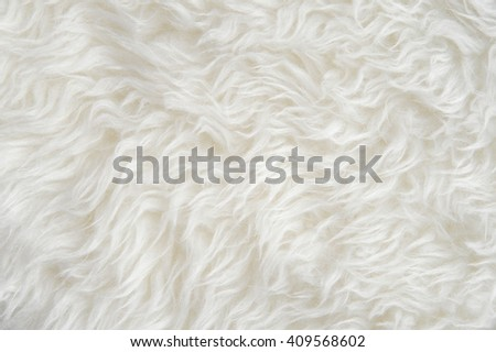 Luxurious wool texture from a  sheepskin rug