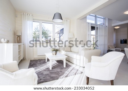 Luxury and spacious living room in elegant style - stock photo
