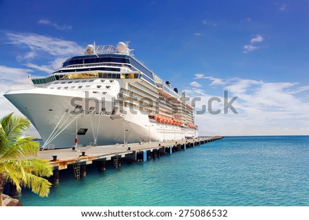 Luxury Cruise Ship in Port - stock photo