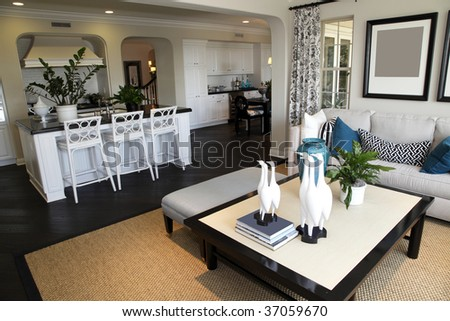Luxury home living room with stylish decor. - stock photo