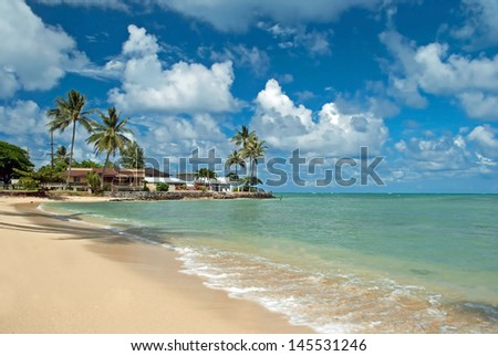 Luxury house on untouched sandy beach with palms trees and azure ocean in background - stock photo