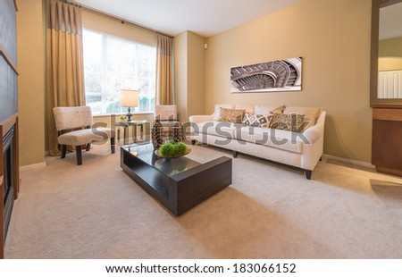 Luxury living room with sofa, couch and coffee table with decorative vases. Interior design. - stock photo