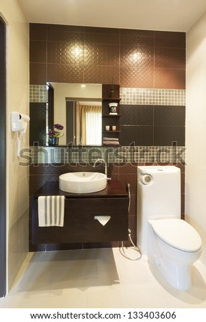 luxury modern style decorated toilet.