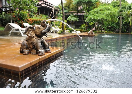 Water feature stock images royalty free images vectors for Garden elephant pool