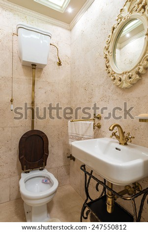 luxury style decorated toilet. - stock photo