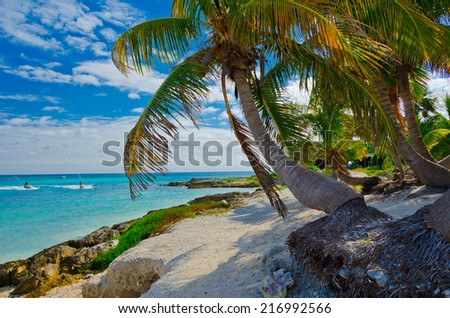 Luxury tropical, caribbean sand beach and lagoon with some palmtrees . - stock photo