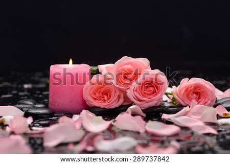 Lying down rose ,petals,candle and wet stones - stock photo