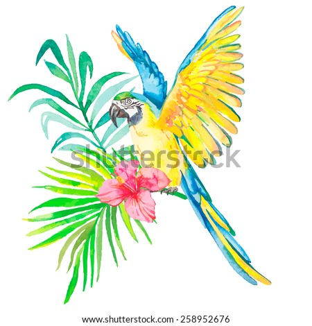 Macaw isolated on white background. Palm leaves and tropical flower. Tropical parrot. Exotic.