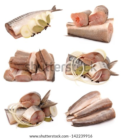Mackerel and hake on a white background - stock photo