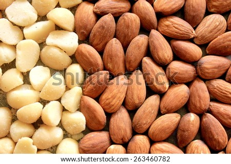Macro Almonds and Macadamia Nuts - stock photo