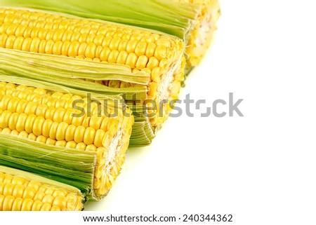 Macro background texture of tasty, juicy corn - stock photo
