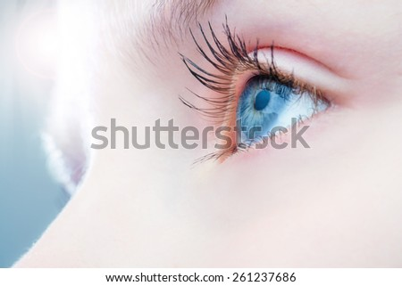 Macro close up of human eye with bright light in background. - stock photo