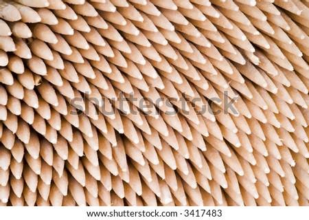 Macro Close up of Toothpicks - stock photo