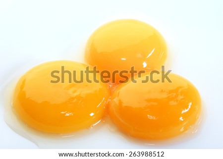 macro egg yolks on a white plate studio - stock photo