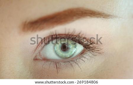 Macro image of female eye closeup - stock photo