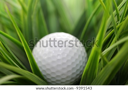 macro of a golf ball in the rough (long grass adjacent to the fairway). - stock photo