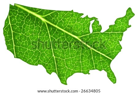 Macro of a green leaf cut out in the shape of the United States of America. - stock photo