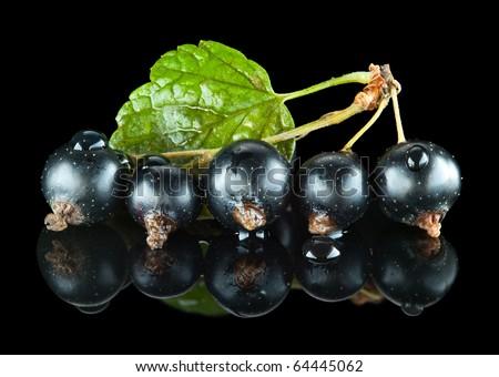 Macro of black currant bunch on reflective plane - stock photo