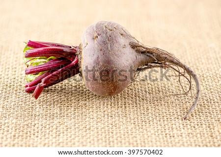 Macro of fibrous beetroot - stock photo