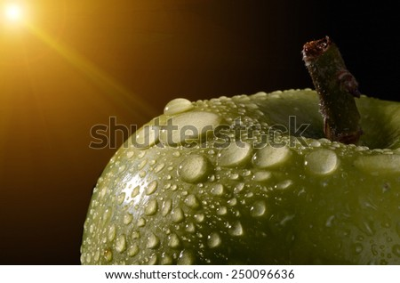 Macro of freshly picked green apples with water droplets. - stock photo
