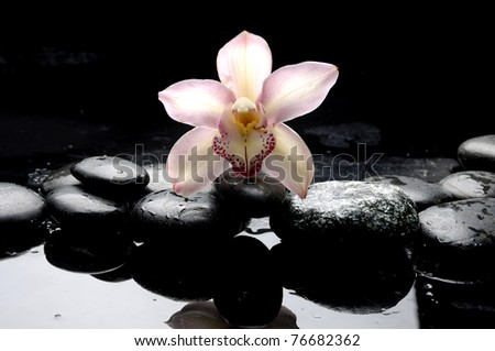 Macro of orchid and therapy stones - stock photo