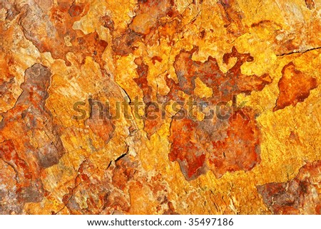 macro of shale texture