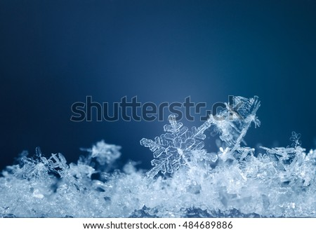 Macro of snowflakes in snowdrift over blue background at snowy Christmas night