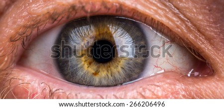 Macro of the eye of a man - Shallow depth of field - stock photo