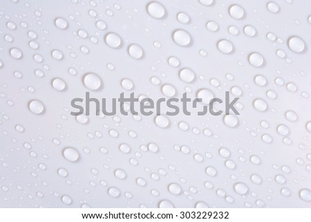 Macro of water drops on white background  - stock photo