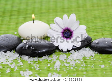 Macro of white gerbera flower on stone with pile of salt on green straw mat