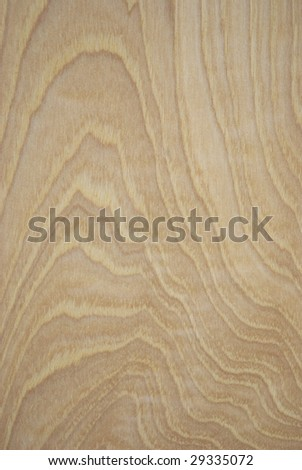 Macro of woodgrain in a piece of character grade hickory hardwood flooring. - stock photo