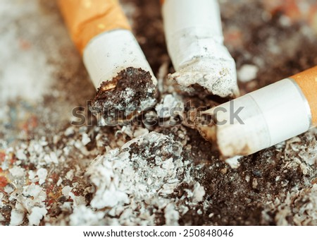 Macro photo of ashtray with three cigarette butts - stock photo