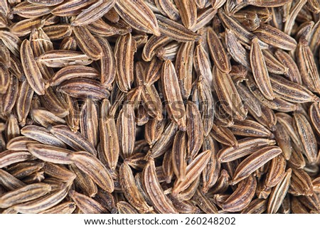 Macro photo of cumin seeds. Closeup 1:1 - stock photo