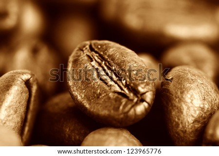 Macro picture of coffee beans. - stock photo