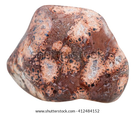 macro shooting of natural mineral stone - polished Leopardskin Jasper (Jaguar Stone, Orbicular Jasper) gemstone from Madagascar isolated on white background - stock photo