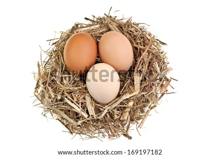 Macro shot of brown eggs in a hay nest