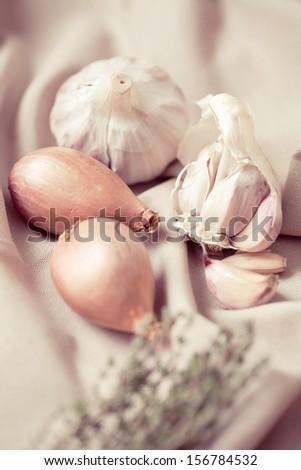 Macro shot of garlic and onion - stock photo